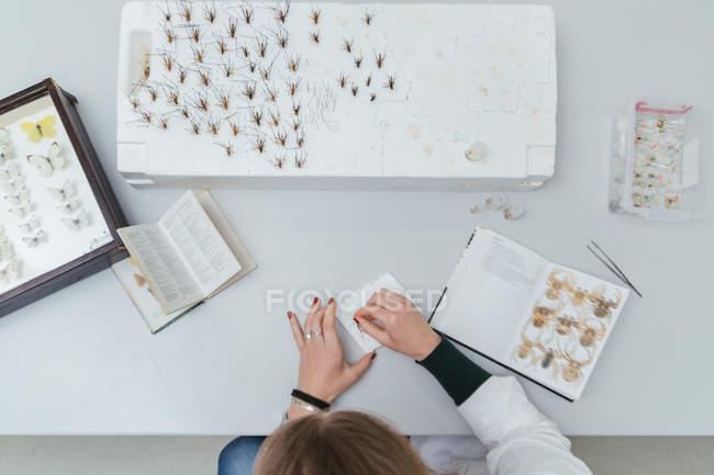 Techniker arbeitet im Biologielabor — Stockfoto