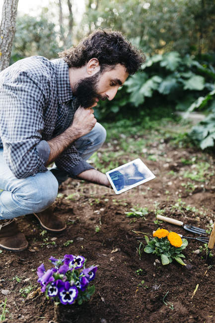 Man taking photographs of flower — Stock Photo