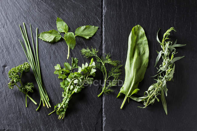 Close-up of fresh green herbs on slate — Stock Photo