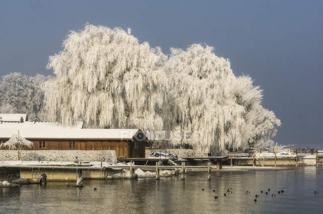 Germania, Baviera, Lago Chiemsee e casa di legno in inverno — Foto stock