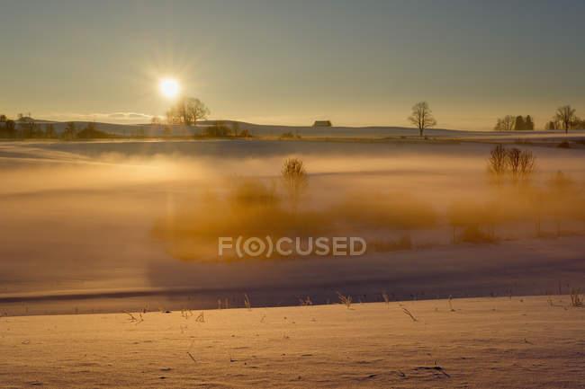 Alemanha, Gebrazhofen, nascer do sol sobre a paisagem nebulosa do inverno — Fotografia de Stock