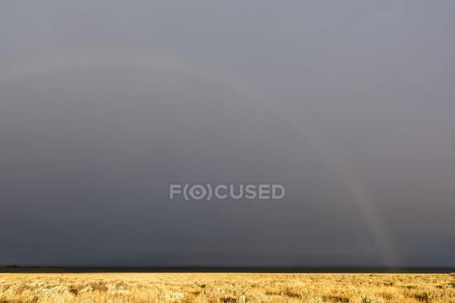 Estados Unidos, Wyoming, Montañas Rocosas, Parque Nacional Grand Teton, arco iris en el cielo tormentoso - foto de stock