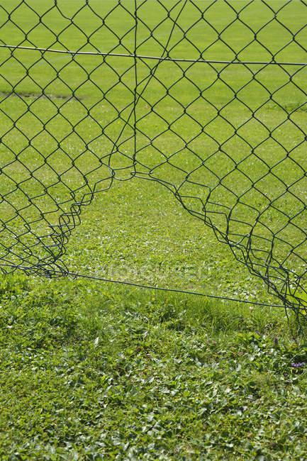 Draht Gitter Zaun Stockfotos Lizenzfreie Bilder Focused