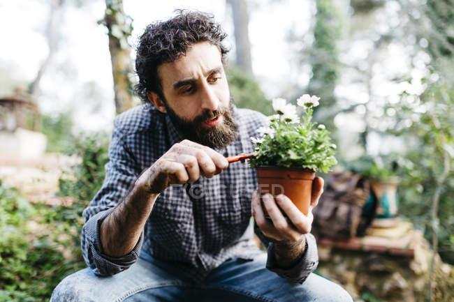 Человек сажает цветы — стоковое фото