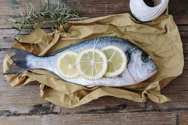 Raw Sea Bream tied with lemon — Stock Photo