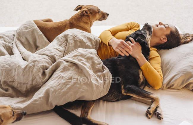 Расслабленная женщина лежит в постели с собаками — стоковое фото