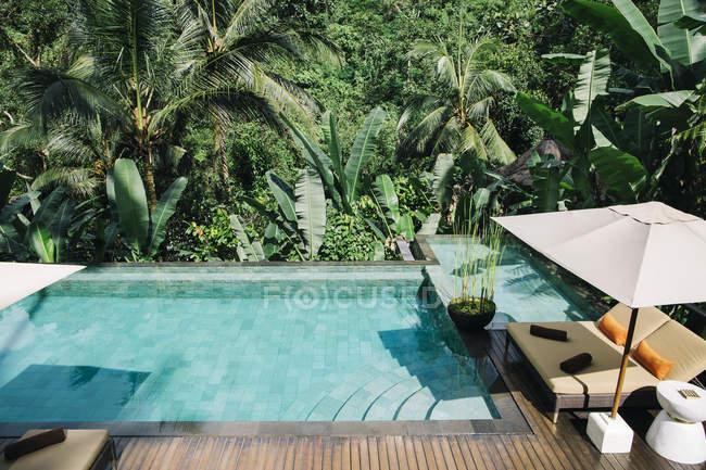 Indonesia, Bali. Tropical Swimming Pool — Stock Photo
