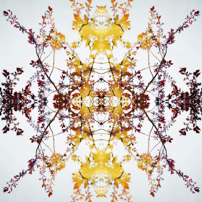 Rosso e giallo fondo fogliame autunnale — Foto stock