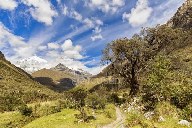 América do Sul, Peru, Andes, Parque Nacional Huascaran, paisagem Natural, com picos de vale e montanha verdes à luz do dia ensolarado — Fotografia de Stock
