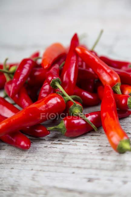 Fresh red chili pods — Stock Photo