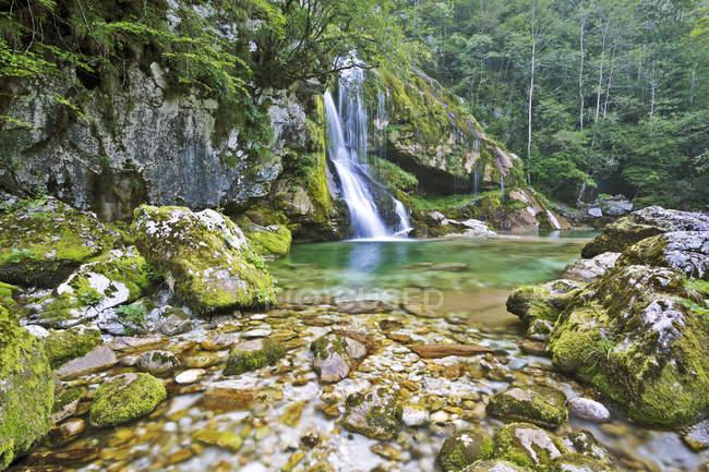 Slovénie, paysage naturel avec cascade forest et boka — Photo de stock
