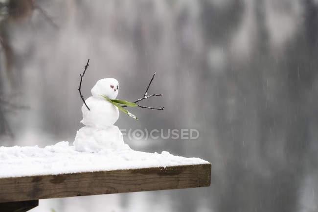 Muñeco de nieve de miniatura en invierno - foto de stock