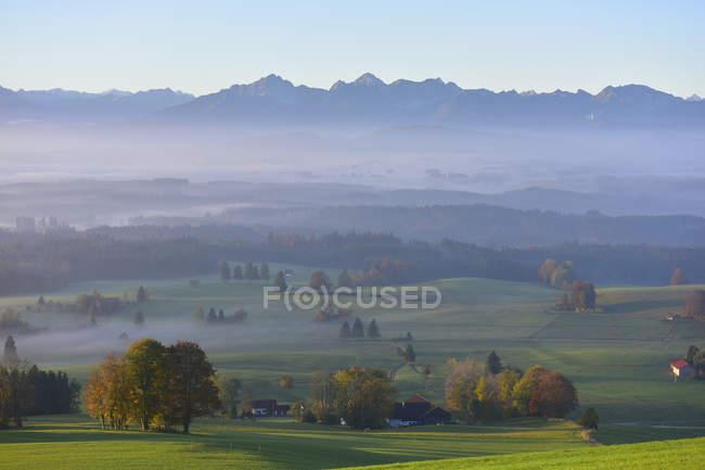 Германия, Альгау, Осенний пейзаж в утреннем тумане — стоковое фото