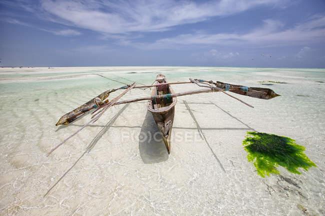 Dhow, barche da pesca tradizionali a Paje, Zanzibar. bassa marea — Foto stock