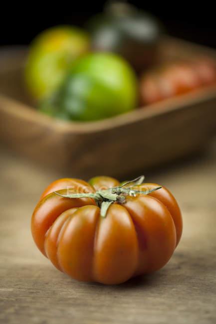 Red Oxheart tomato — Stock Photo