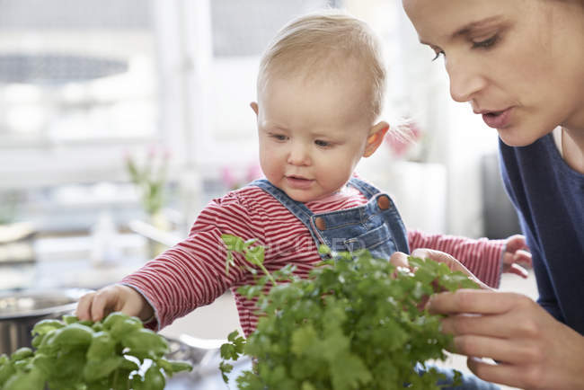 Матір та дитинча дівчина, вивчаючи трави кухні — стокове фото