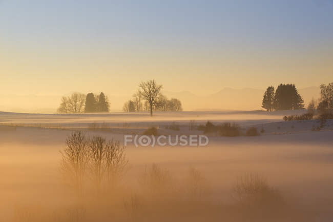 Germany, Gebrazhofen, hazy winter landscape at dawn — Stock Photo