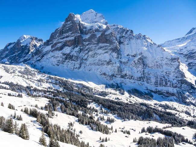 Зимові гори краєвид — стокове фото