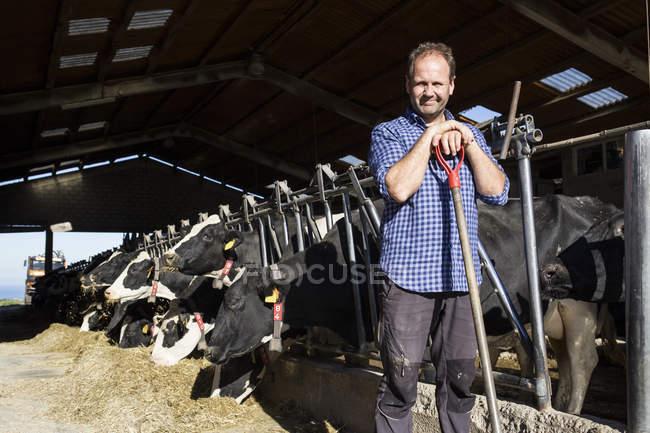 Ritratto di agricoltore che tiene una pala in un allevamento di vacche — Foto stock