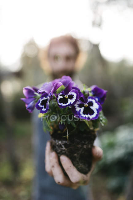 Gärtner mit einem Werk in seiner hand — Stockfoto