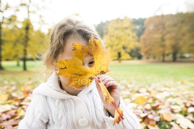 Дівчина дивиться через отвір в Осіннє листя — стокове фото