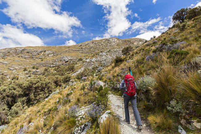 Turista, Cordilheira Blanca, Parque Nacional de Huascarán, Peru, Andes, de caminhadas — Fotografia de Stock