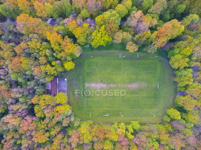 Vista della corte circondata da alberi durante il giorno — Foto stock