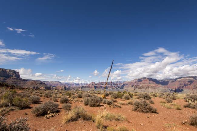 США, штат Невада, Большой Каньон Национальный парк — стоковое фото