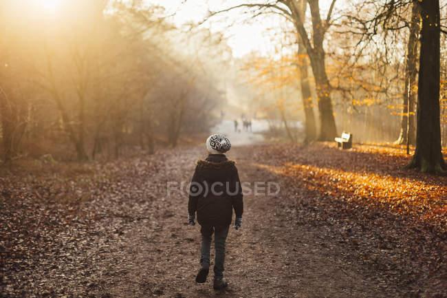 Мальчик, прогуливаясь по лесу пропитанной солнцем — стоковое фото