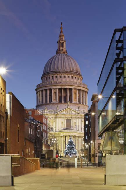 Decorazioni Natalizie Londra.Albero Di Natale Del Regno Unito Londra Davanti Alla Cattedrale Di