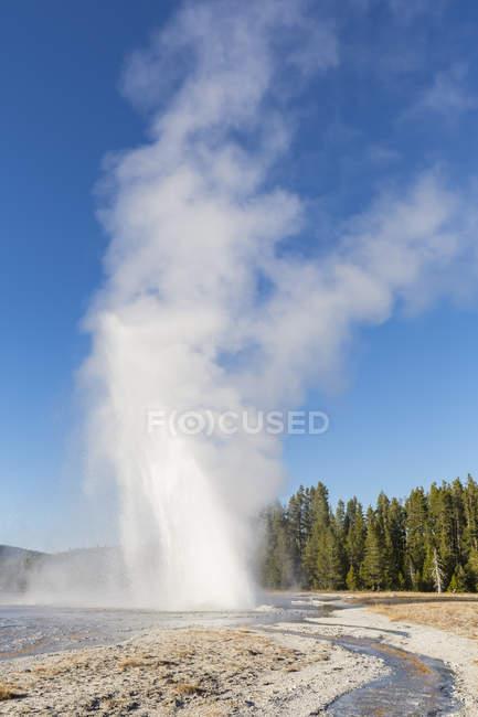 USA, Vereinigte Staaten von Amerika, Wyoming, Montana, Idaho, Yellowstone-Nationalpark, Upper Geyser Basin — Stockfoto