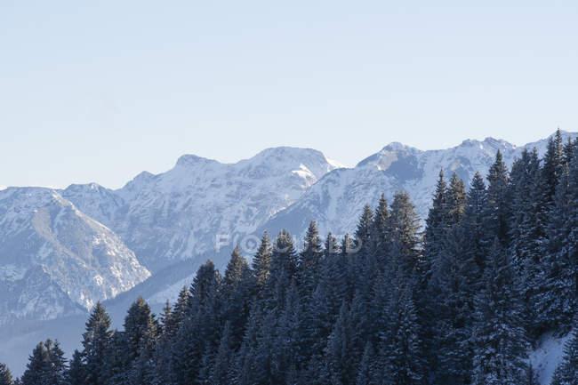 Германия, Нессельванг, Альпы Альгау, вид на заснеженные вершины — стоковое фото