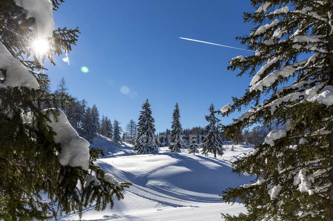 Austria, st johann im pongau, paesaggio invernale innevato — Foto stock