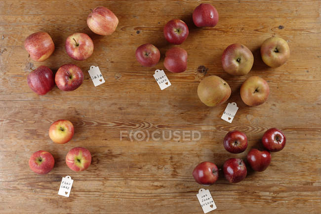 Different sorts of apples on wooden table — Stock Photo