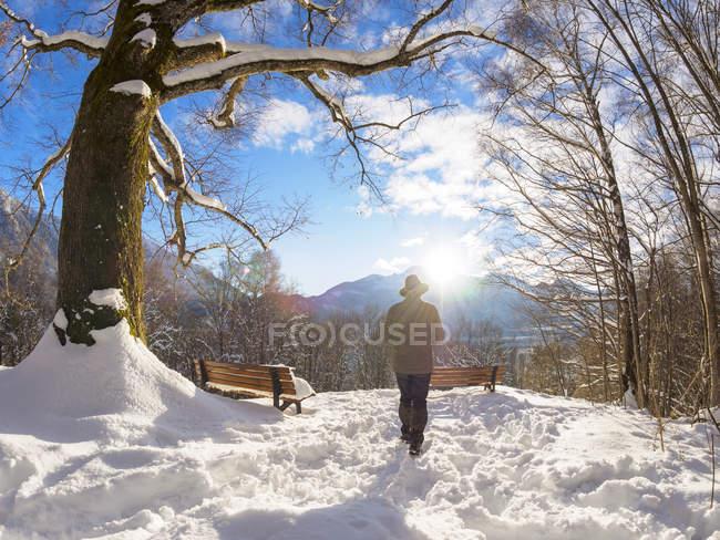 Alemania, Kochel am See, vista trasera del hombre en el mirador cubierto de nieve - foto de stock