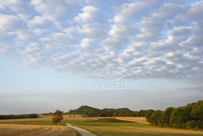Германия, Бад Штаффельштайн. Пешеходная тропа в поле — стоковое фото