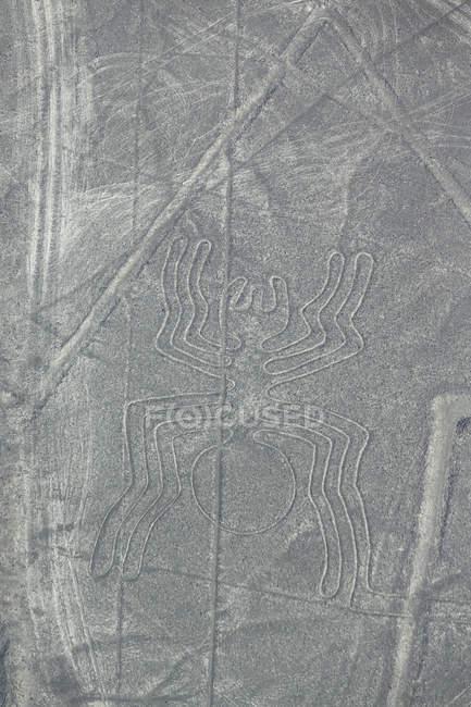 South America, Peru, Central Andes, Nazca Province, Ica Region, Nazca (Nasca),  Aerial view of the The Spider shape — Stock Photo