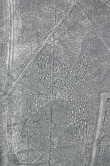 South America, Peru, Central Andes, Nazca Province, Ica Region, Nazca (Nasca),  Aerial view of the The Spider shape — Stock Photo