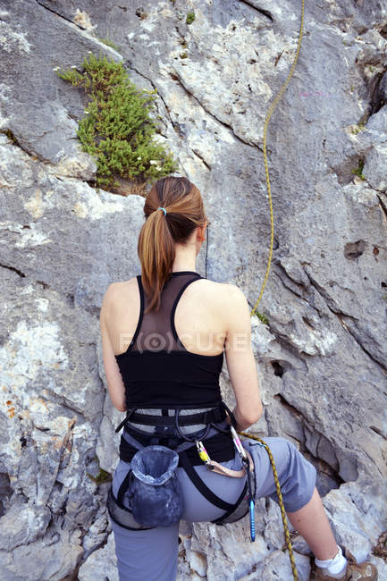 Rear cropped portrait of female climber on rock wall — Stock Photo