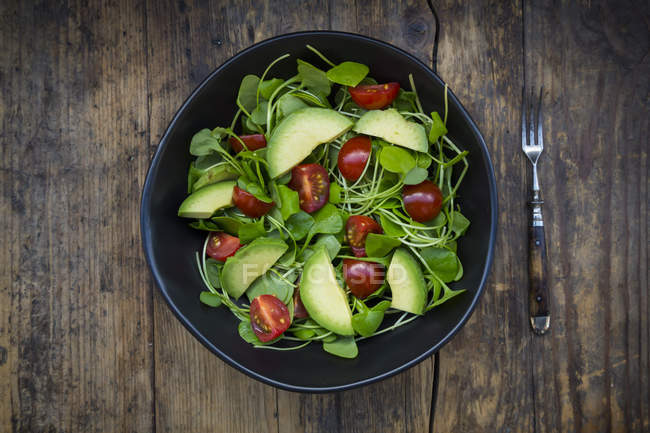 Salada de alface indiano com abacate e tomate — Fotografia de Stock