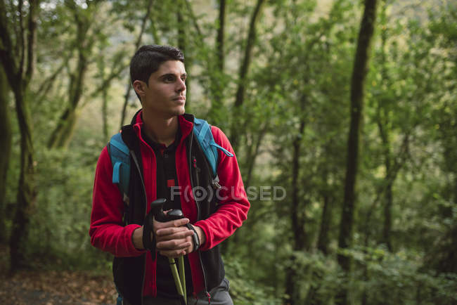 Hiker man standing with walking sticks in nature — Stock Photo