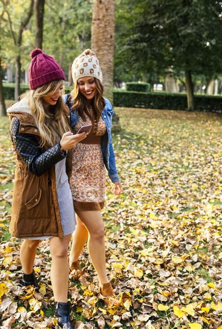 Dois melhores amigos do sexo feminino usando o smartphone no parque no outono — Fotografia de Stock