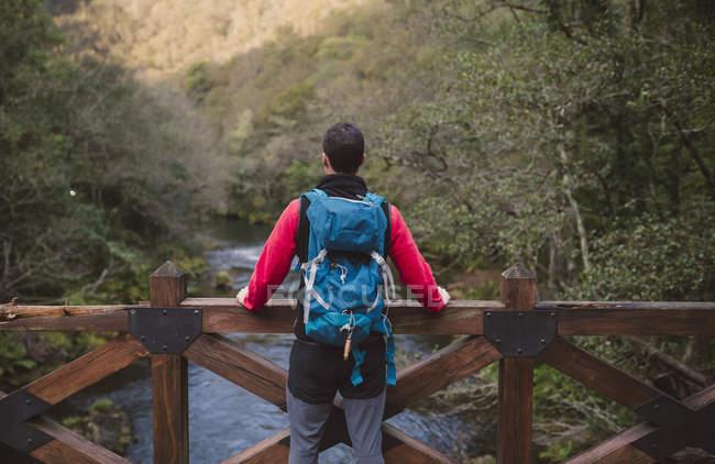 Людина мандрівного стоячи на мосту і споглядаючи ліс — стокове фото