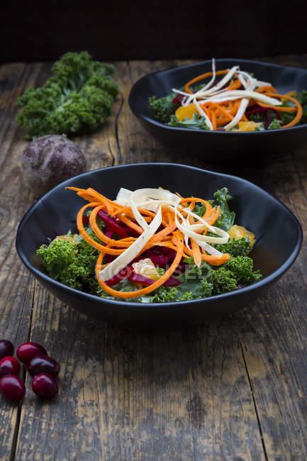 Salat mit Grünkohl, Roter Bete, Pastinaken, Karotten, Orangen und Wolfsbeeren — Stockfoto