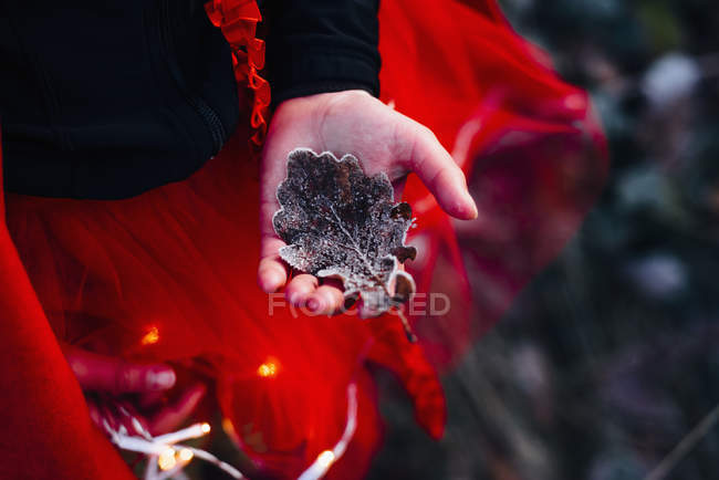 Girl in red dress holding frozen oak leave — Stock Photo