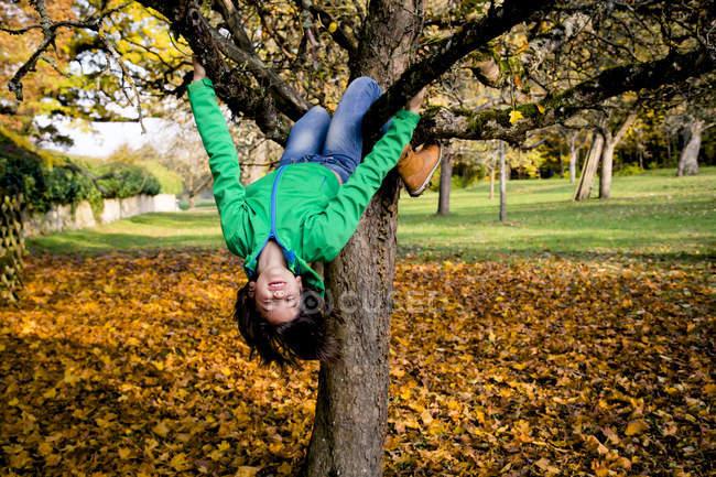 Девушка забирается на дерево осенью с закрытыми глазами — стоковое фото