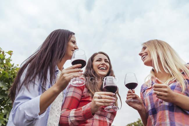 Trois jeunes femmes heureux dans un vignoble tenant des verres de vin rouge — Photo de stock