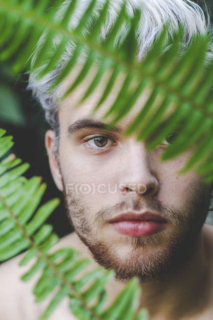 Portrait of young man behind fern leaves — Stock Photo