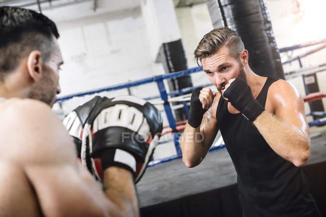 Kaukasische Boxer sparring mit Trainer — Stockfoto