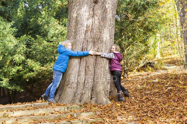 Due bambini che abbracciano albero in autunno — Foto stock